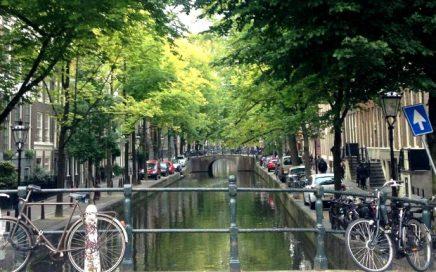 organisation_seminaire_amsterdam